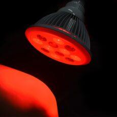Terapia Świateł Czerwonym i Podczerwonym - MitoHacker